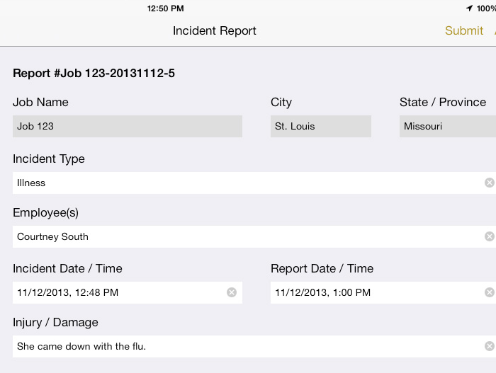 incident reporting software for industrial painting qc app
