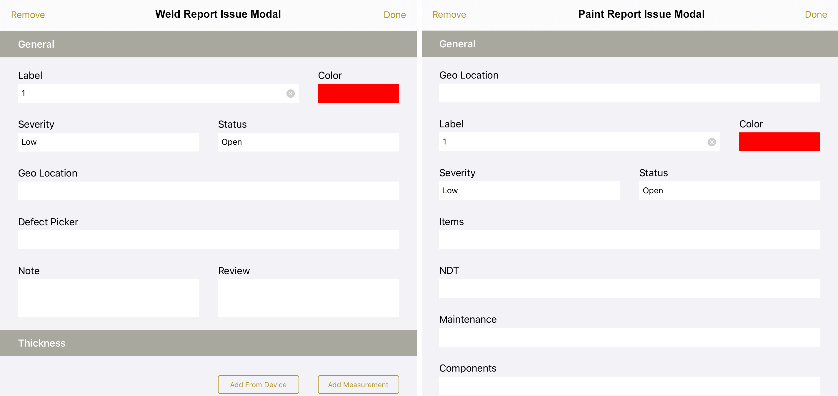 Example of custom issue modal fields per report type